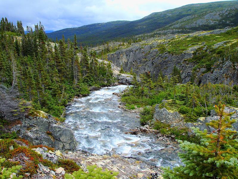 El camino del oro hacia el Klondike. Uno de los ríos que une los muchos lagos de la zona. Alaska