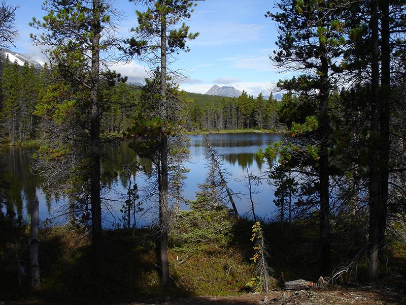 El camino del oro hacia el Klondike. Uno de los muchos lagos a lo largo del Chilkoot Trail