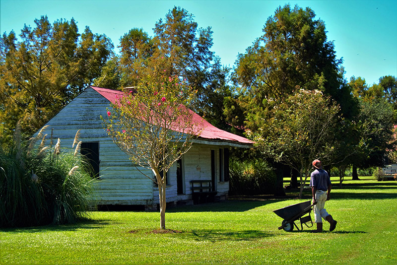 En algunas plantaciones se muestra cómo era la vida de los esclavos durante la etapa de esclavitud. Luisiana
