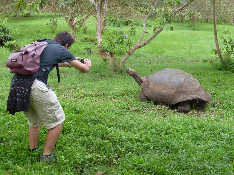 Junto a una tortuga gigante, Islas Galápagos