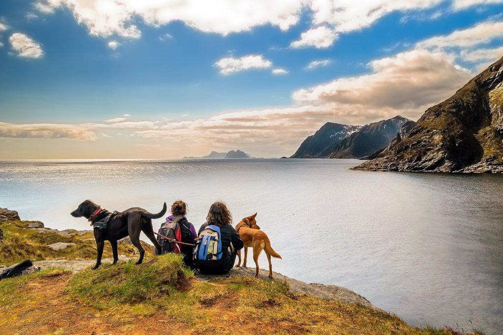 Noruega: Å