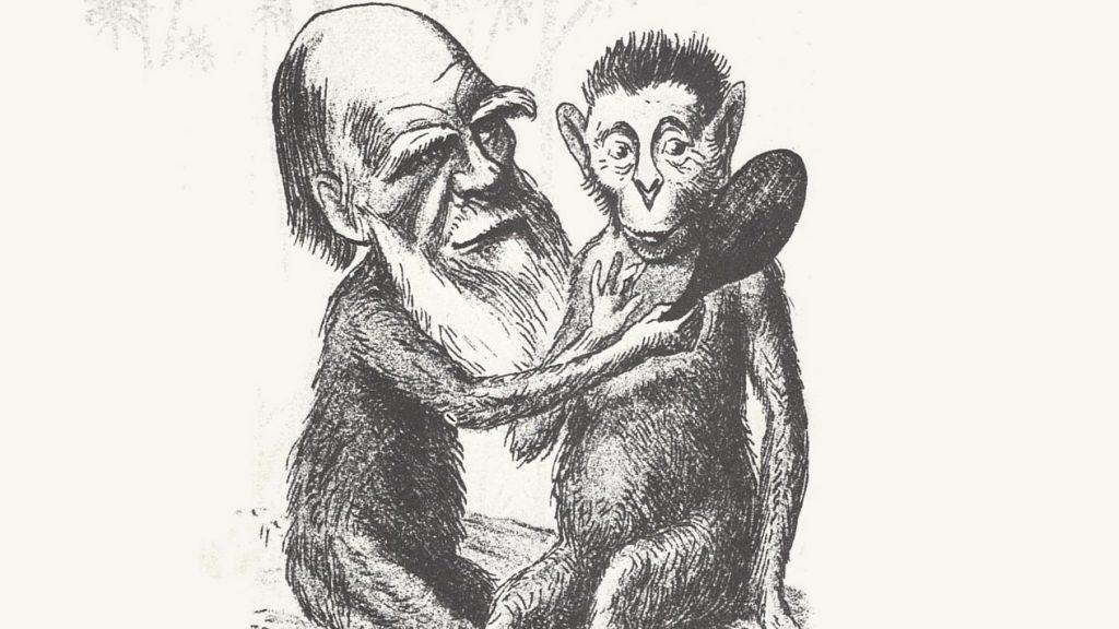 Darwin_cartoon