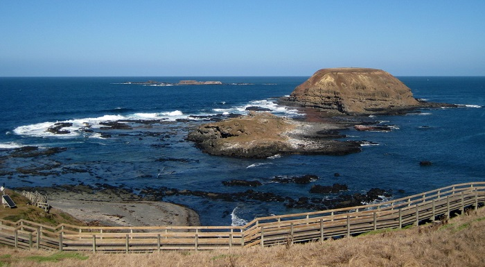 The-Nobbies-Phillip-Island