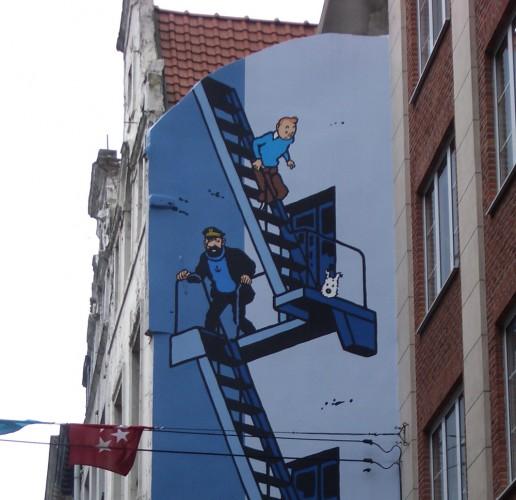 bruselas 7