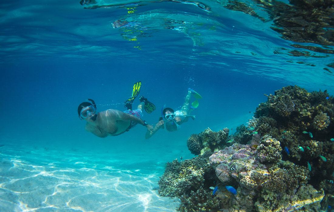 Islas Cook snorkel