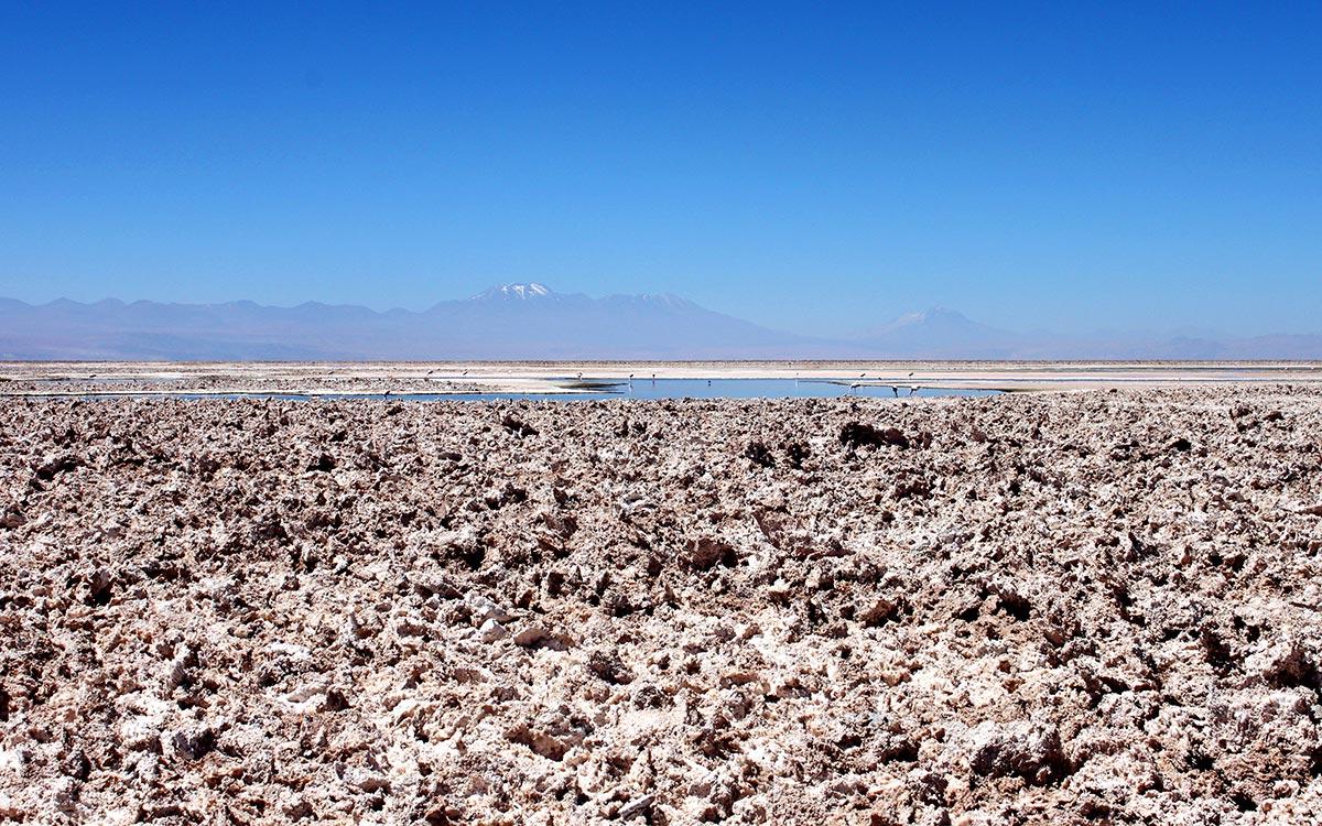 Cristales de sal en el Salar de Atacama