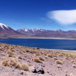 Desierto de Atacama. Laguna MIscardi