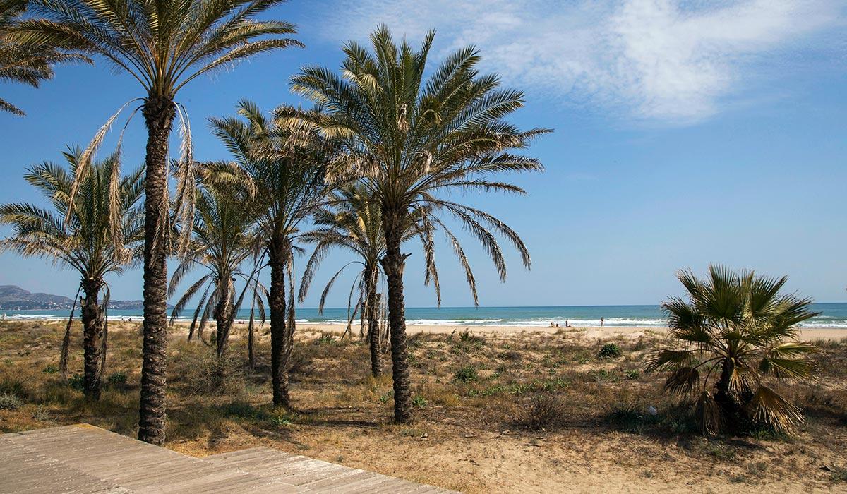 Castelló. Playa del Pinar